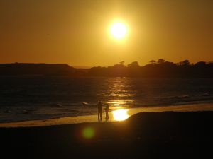 father-and-sunset-460335-m