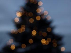 christmas-tree-1330598-m