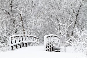Snow covered foot bridge and forest