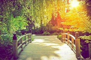 Scenic Garden Bridge